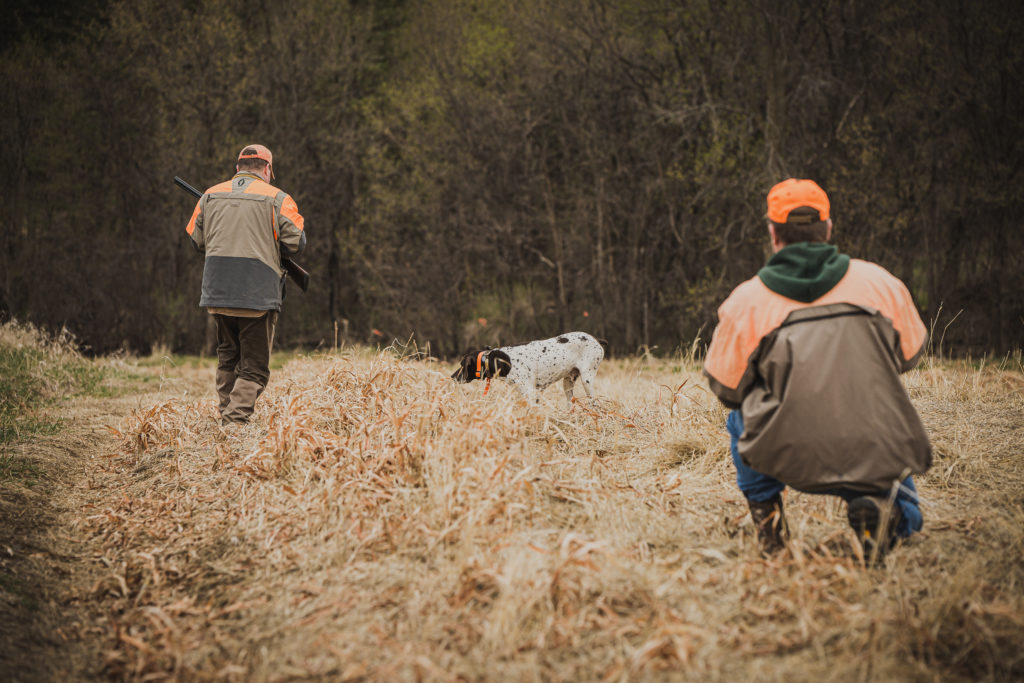 two hunters in a field with their hunting dog